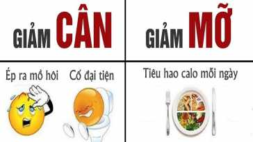 yeucothe-ban-dang-giam-can-hay-giam-mo-1