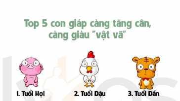 yeucothe-top-5-con-giap-cang-tang-can-cang-giau-vat-va1